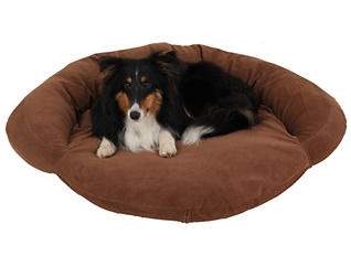 Biscuit Small Pet Bed, Chocolate Brown, , large