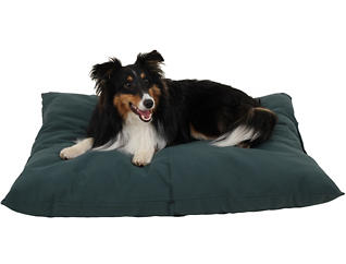 Oscar Small Pet Bed, Green, , large