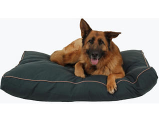 Buster Large Pet Bed, Green, , large