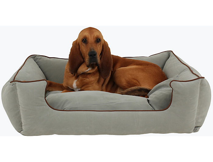 Fine Lola X Large Pet Bed Art Van Home Theyellowbook Wood Chair Design Ideas Theyellowbookinfo