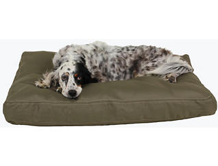 Winston Small Pet Bed, Green, , large