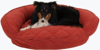 Gus Small Pet Bed, Red, swatch