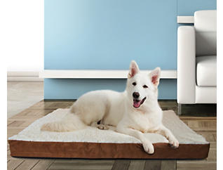 Pet Crate Cushion-Large, , large