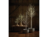 shop 3' Birch LED In/Out LED Tree