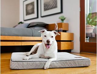 Memory Foam Large Pet Bed, Grey, , large