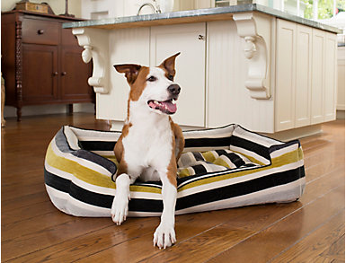 Large Sleeper Pet Bed, Citron, , large