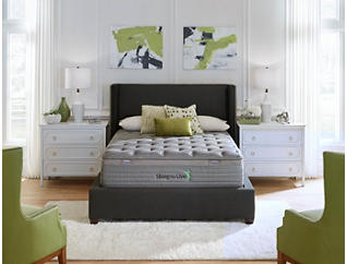 Sleep to Live Series 3.0 Tan/Green Mattress & Foundations, , large