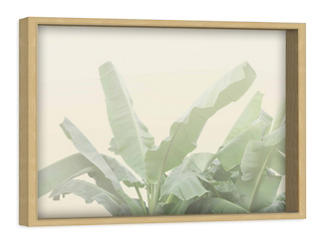 Banana Leaf 12x18 Canvas Art, , large