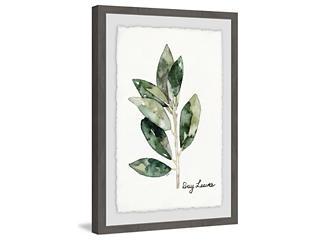 Bay Leaf 24x16 Framed Art, , large
