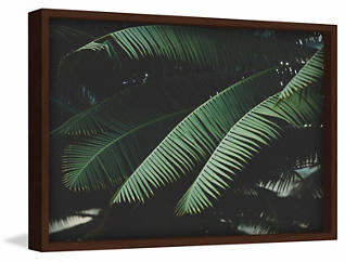 Tropics 24x36 Canvas Art, , large