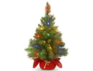 shop Red Fir Tree w/ Multi LED