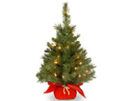 shop Majestic Fir w/ Lights