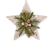 shop Holiday Silver Star