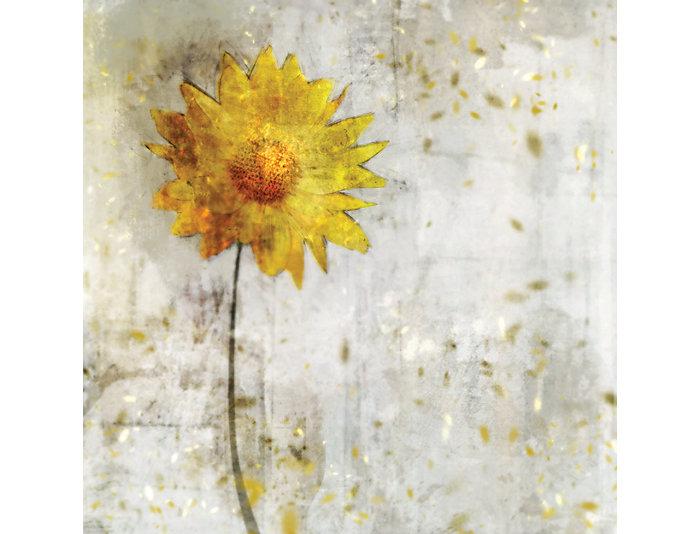 Yellow Flower Canvas Art, , large