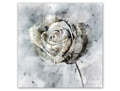 White Flower Canvas Art, , large