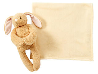Bunny Brown Plush Toy and Blanket, , large