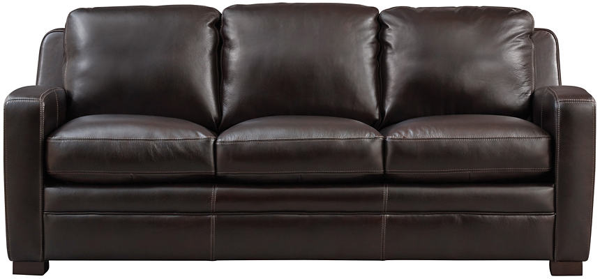 Theory Queen Leather Sleeper Sofa