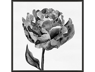 Black and White Floral III, , large