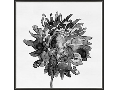 Black and White Floral IV, , large