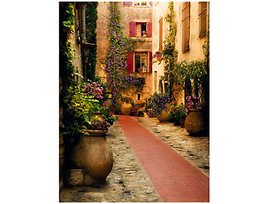 Fleur De Rue Outdoor Wall Art, , large