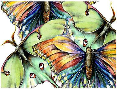 Butterfly II Outdoor Wall Art, , large