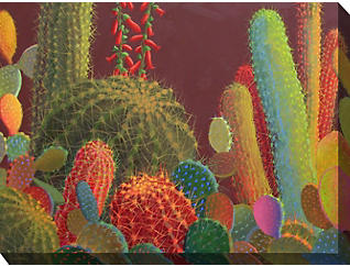 Desert Flora II Outdoor Art, , large