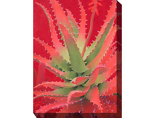 Red Cactus V Outdoor Art, , large