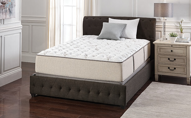 Free Heads Up Power Base with Any Natura Mattress
