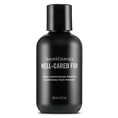Well-Cared For Brush Conditioning Shampoo