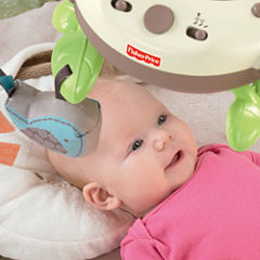 Fisher-Price My Little Snugabunny Ultra Comfort Musical Baby Activity Center