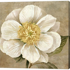 Up Close Cream Rose Gallery Wrapped Canvas Wall Art On Deep Stretch Bars