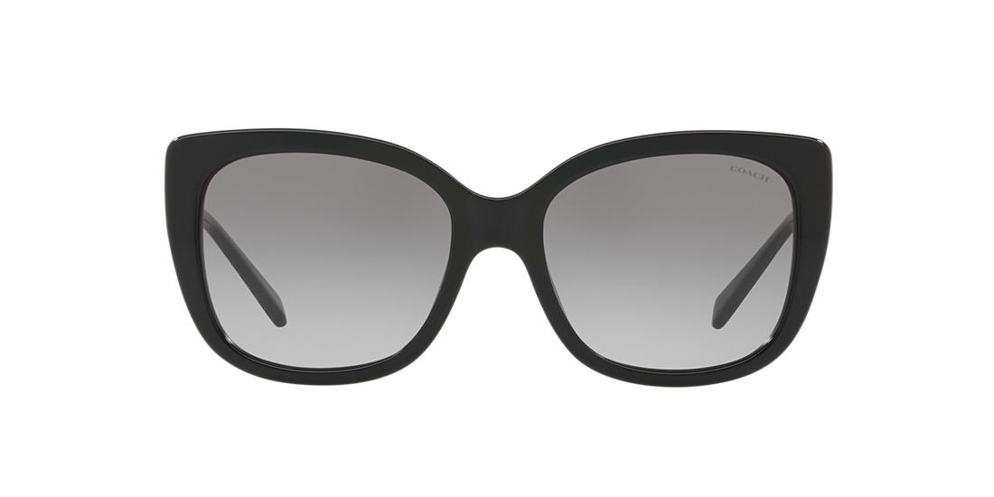 586938156e Gafas de Sol Coach HC8246 L1040 | Sunglass Hut