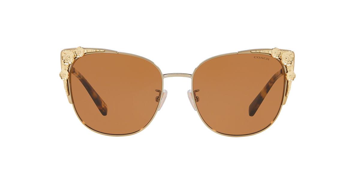 Rose Gold HC7085 Brown