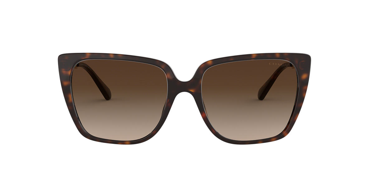 Tortoise HC8256U Brown  55