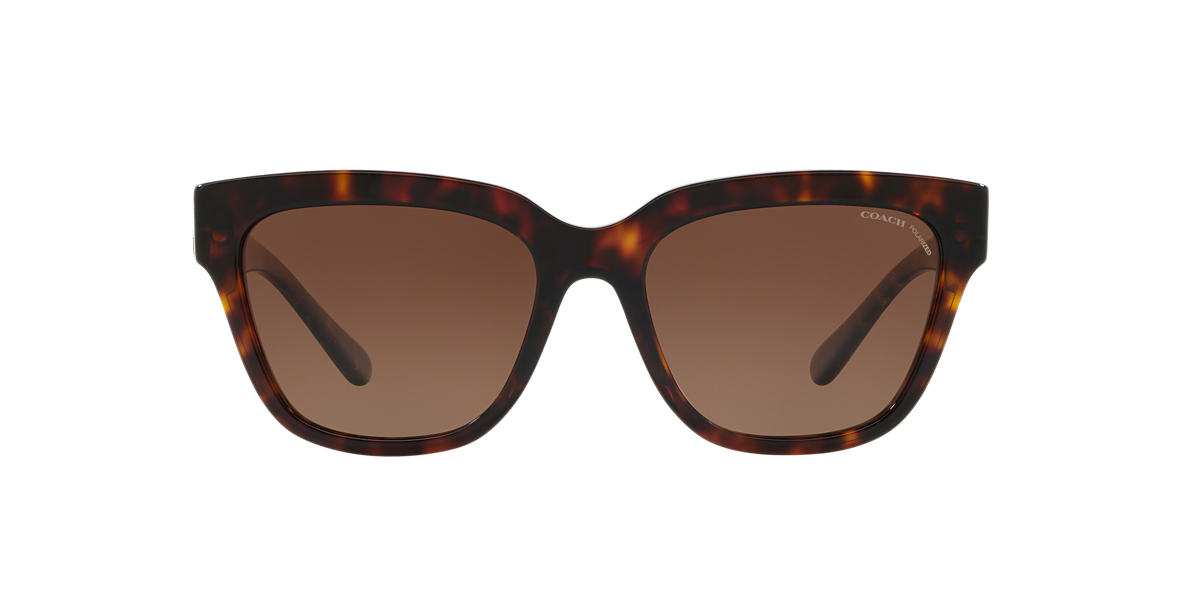 Tortoise HC8262 Brown  55