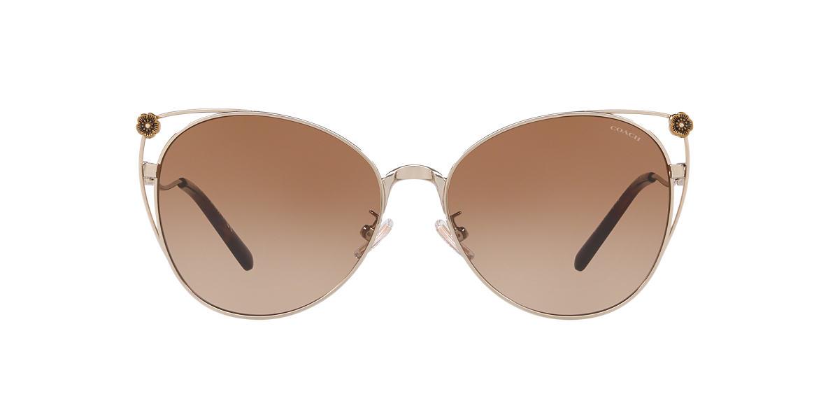 Gold Shiny HC7096B Brown  58