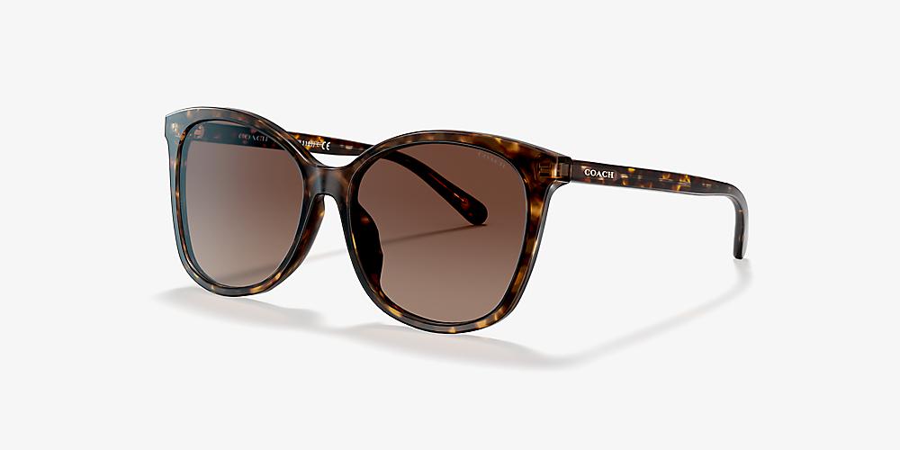 d4f4b3b1b Coach HC8271U 57 Brown & Gunmetal Polarized Sunglasses   Sunglass ...