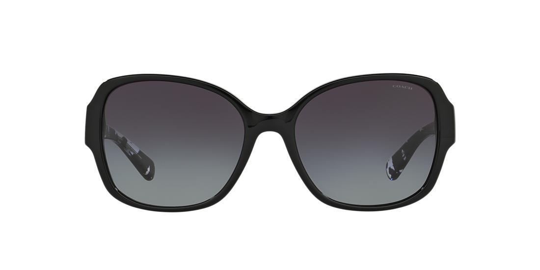 3de74f5934 Gafas de Sol Coach HC8166 L154 | Sunglass Hut