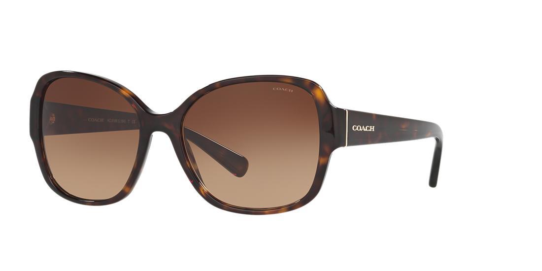 Coach Tortoise Butterfly Sunglasses - hc8166