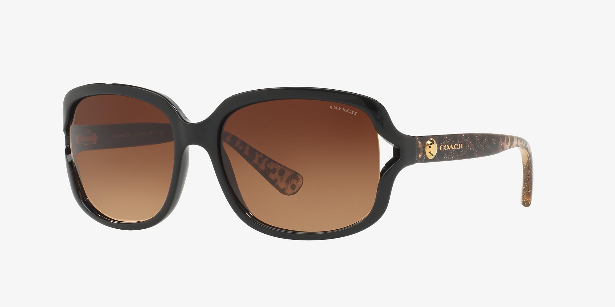 2f23e114a256 Coach HC8169 57 Brown & Black Sunglasses | Sunglass Hut USA