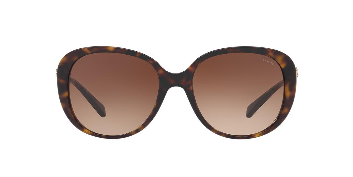 8395a7bdc0 ... sunglasses a1a9b dabf4 promo code for coach tortoise hc8215 brown  lenses 57mm 7d197 38b23 ...