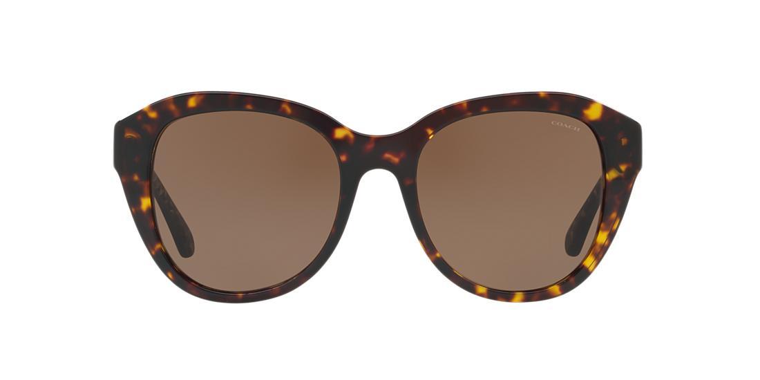 d858f0dae0 Comprar gafas de sol Coach HC8231 Female en Sunglass Hut México ...