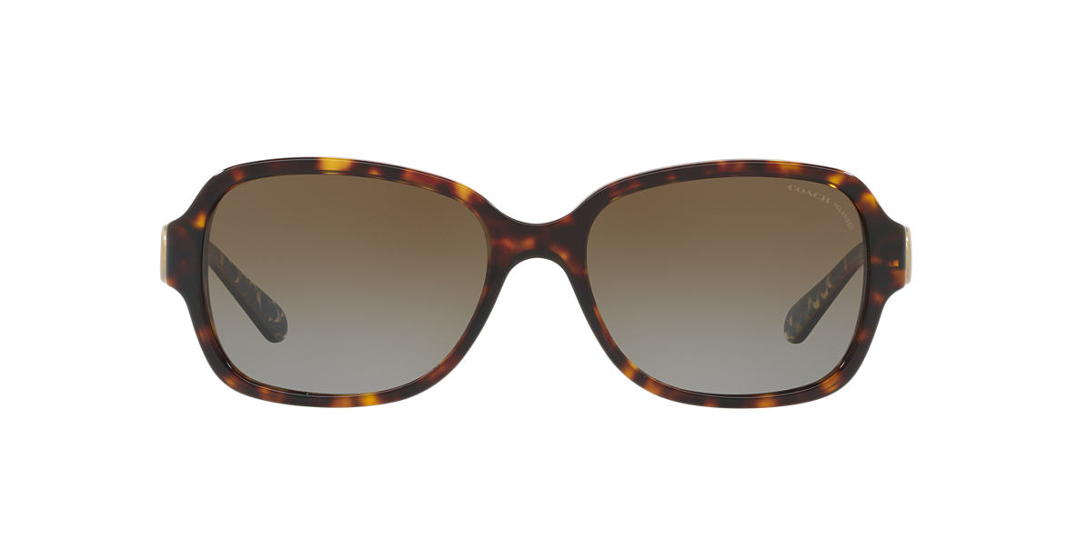 Tortoise HC8241 Brown  57