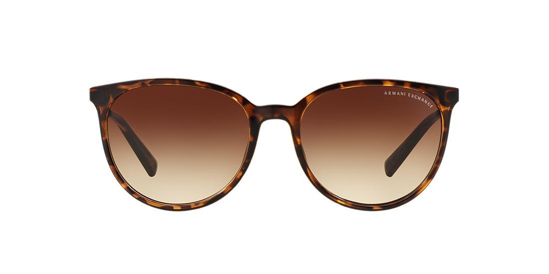 Óculos de Sol Armani Exchange AX4048SL   Sunglass Hut d500ea1a25