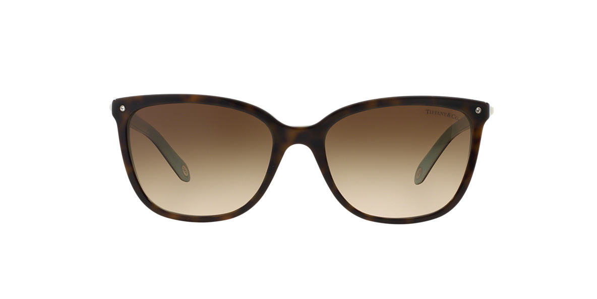 Tortoise TF4105HB Tiffany Aria Brown  55