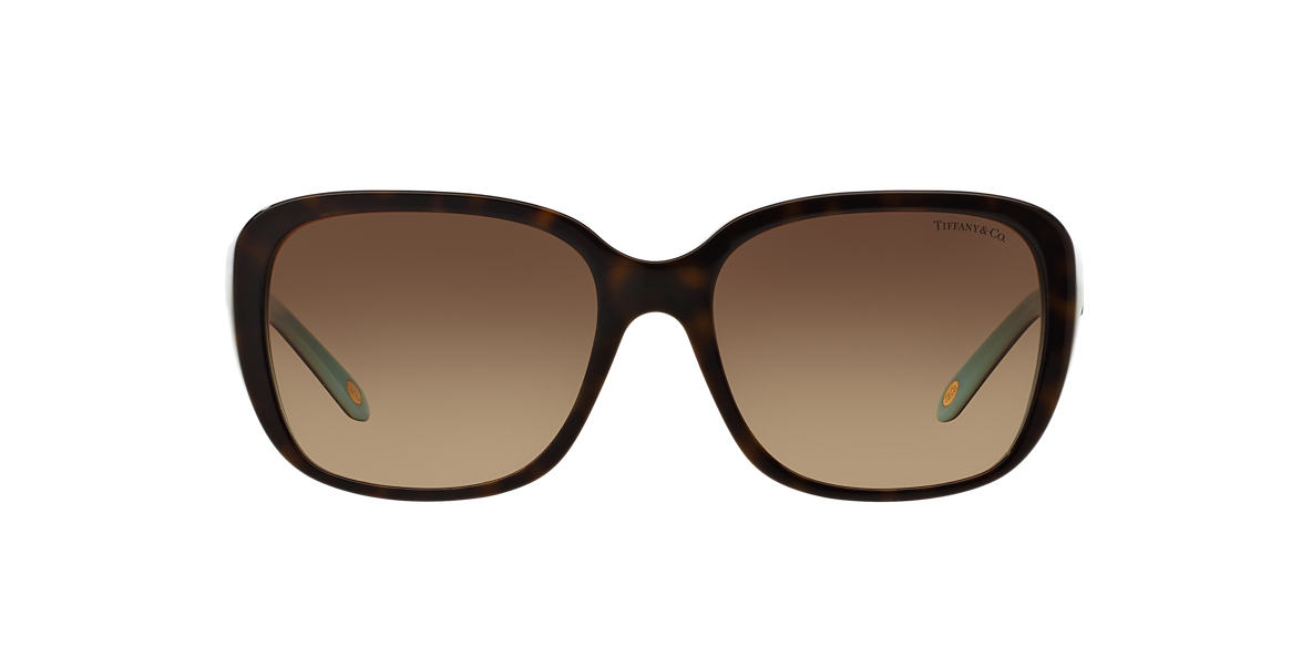 Tortoise TF4120B Tiffany Enchant Brown  57