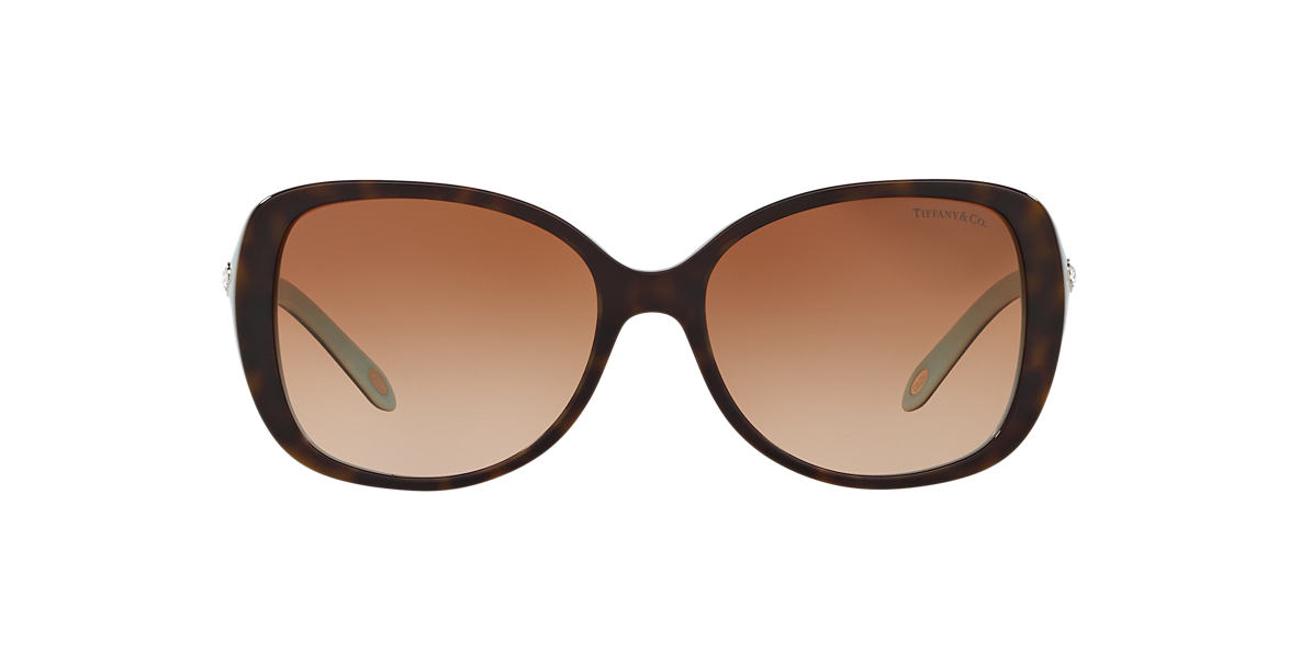 Tortoise TF4121B Brown  55