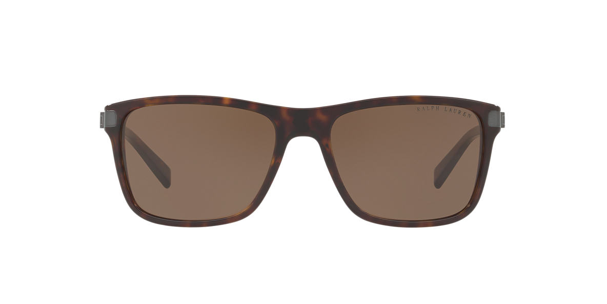Tortoise RL8155 Brown  57