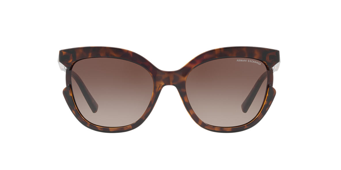 Tortoise AX4065S Brown  55