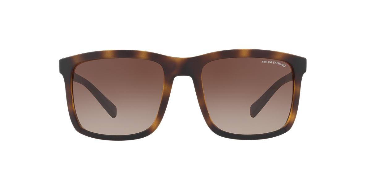Tortoise AX4067S Brown  55